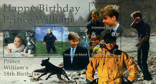 [The 18th Anniversary of the Birth of Prince William, Typ ]