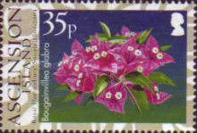 [The 200th Anniversary of the Royal Horticultural Society, Typ AES]