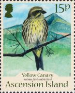 [Birds - Yellow Canary, Typ AMB]
