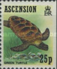 [Ascension Wildlife, Typ PY]