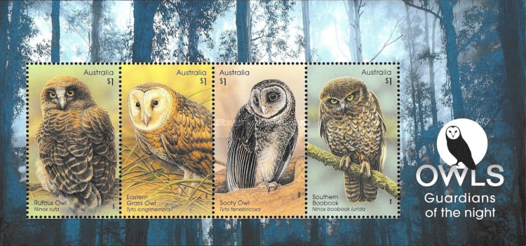 [Owls - Guardians of the Night, type ]