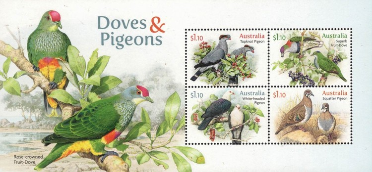 [Birds - Doves and Pigeons, type ]