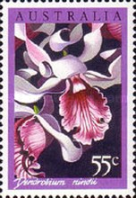 [Orchids, type AGA]