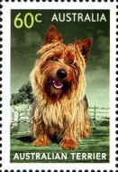[Top Dogs, type DUS]