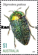 [Insects - Jewel Beetles, type EIB]
