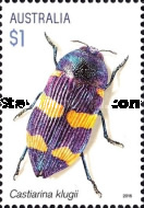[Insects - Jewel Beetles, type EIC]