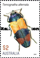 [Insects - Jewel Beetles, type EID]