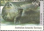 [Antarctic Wildlife, type CO]