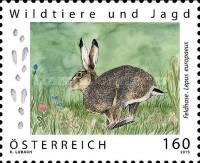 [Wild Animals and Hunting - Brown Hare, type DHH]