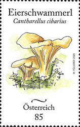 [Endemic Mushrooms of Austria, Typ DTL]