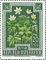 [Flowers - Charity Stamps, Typ OL]
