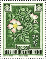 [Flowers - Charity Stamps, Typ OQ]