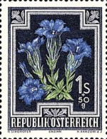 [Flowers - Charity Stamps, Typ OS]