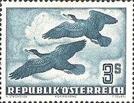 [Airmail - Birds, type SX]