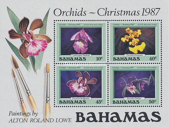 [Christmas - Orchids, Typ ]