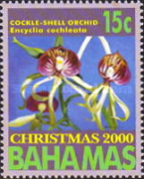 [Christmas - Orchids, Typ AJK]