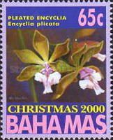 [Christmas - Orchids, Typ AJL]