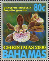 [Christmas - Orchids, Typ AJN]