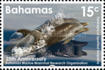 [Dolphins - The 25th Anniversary of the Bahamas Marine Mammal Research Organisation, Typ BCT]