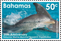 [Dolphins - The 25th Anniversary of the Bahamas Marine Mammal Research Organisation, Typ BCU]