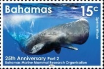 [Whales -  The 25th Anniversary of the Bahamas Marine Mammal Research Organisation, Typ BDL]