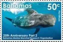 [Whales -  The 25th Anniversary of the Bahamas Marine Mammal Research Organisation, Typ BDM]