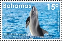 [The 25th Anniversary of the BMMRO - Bahamas Marine Mammal Research Organisation, type BEG]
