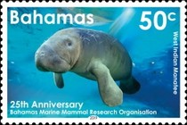 [The 25th Anniversary of the BMMRO - Bahamas Marine Mammal Research Organisation, type BEH]
