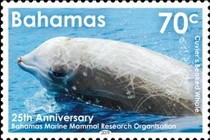 [The 25th Anniversary of the BMMRO - Bahamas Marine Mammal Research Organisation, type BEJ]