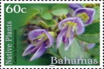 [Definitives - Native Plants, type BES]