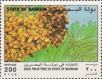 [The Date Palm, Typ LK]