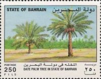 [The Date Palm, Typ LL]