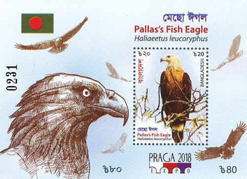 [Birds - Fish Eagle - Specialized World Stamp Exhibition PRAGA 2018, type AVD]