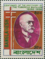 [The 100th Anniversary of Robert Koch's Discovery of Tubercle Bacillus, type EI]