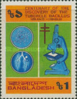 [The 100th Anniversary of Robert Koch's Discovery of Tubercle Bacillus, type EJ]