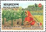[I.F.A.D. Seminar on Agricultural Loans for Rural Women, type HN]