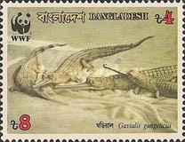 [Endangered Wildlife - Gharial, type JH]