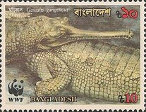 [Endangered Wildlife - Gharial, type JI]