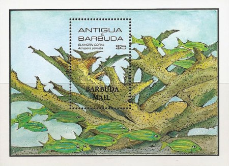 [Marine Life - Issue of 1985 of Antigua & Barbuda Overprinted