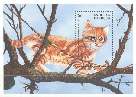 [Cats of the World - Issue of 1995 of Antigua & Barbuda Overprinted