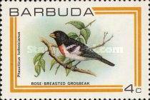 [Birds, type IM]