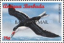 "[Sea Birds of the Caribbean - Issues of 1996 of Antigua & Barbuda Overprinted ""BARBUDA MAIL"", type UF]"