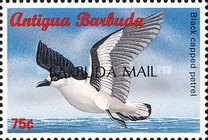 "[Sea Birds of the Caribbean - Issues of 1996 of Antigua & Barbuda Overprinted ""BARBUDA MAIL"", type UF1]"