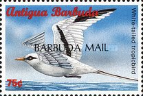 "[Sea Birds of the Caribbean - Issues of 1996 of Antigua & Barbuda Overprinted ""BARBUDA MAIL"", type UF5]"