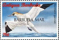 "[Sea Birds of the Caribbean - Issues of 1996 of Antigua & Barbuda Overprinted ""BARBUDA MAIL"", type UF6]"