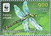 [WWF - Dragonfly the Green Snaketail, type ACN]