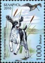 [Hunting Dogs, type ADA]
