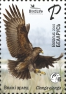 [Bird of the Year - Greater Spotted Eagle, Typ ATP]