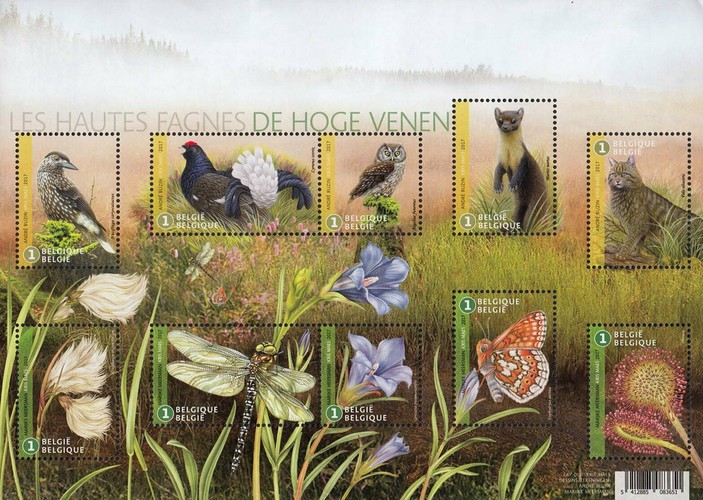 [The 60th Anniversary of the High Fens Protected Nature Reserve, Typ ]
