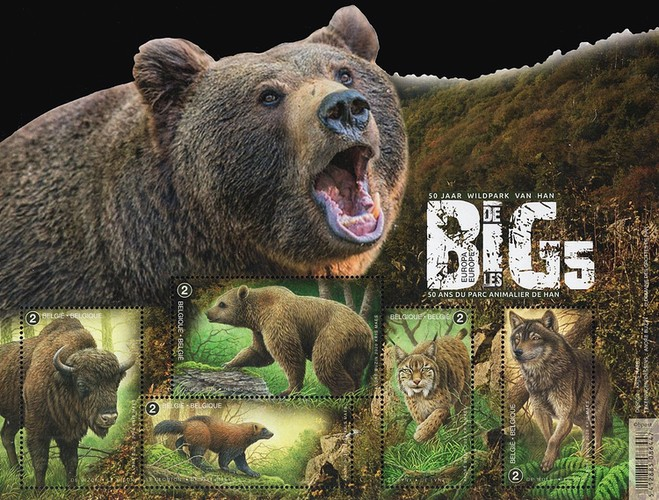 [Fauna - The Big Five of Europe, type ]